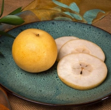 Fruit Variety :: New Pear