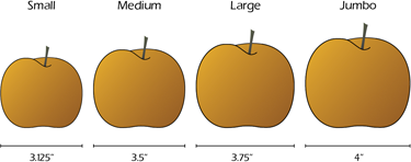 Image: Pear Size Chart